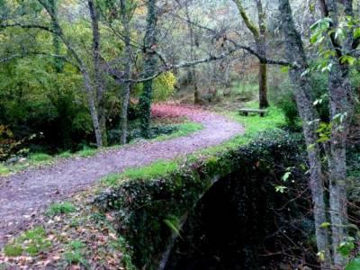 Sierra de Francia [Fiesta de la Almudena] senderismo doñana viajes culturales desde madrid viaje or